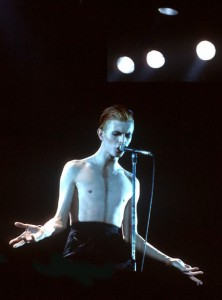 The Thin White Duke, indeed.